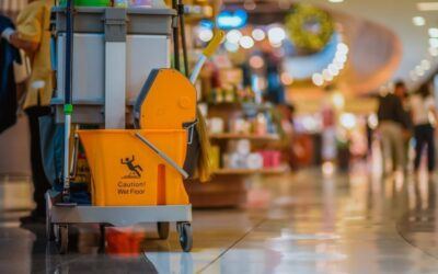 SMEs & THEIR ROLE IN CLEANING PROCUREMENT